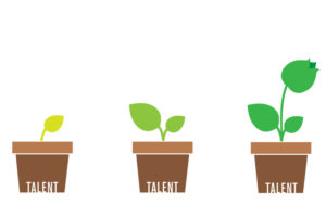 Growing Your Own Talent